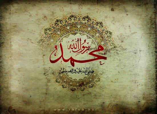 phoca_thumb_l_1431-safar-28-550-1