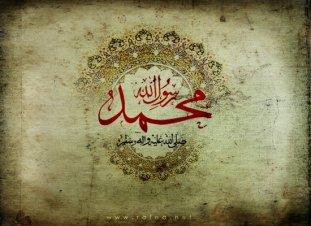 phoca_thumb_l_1431-safar-28-550-1.jpg